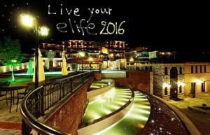 elife2016